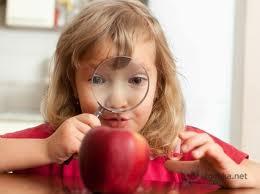 развитие любознательности у детей