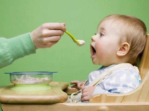 как вводить кашу в прикорм ребенка