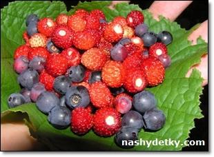 ягоды и дети
