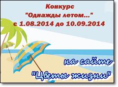 beach-konkurs