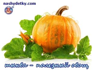 тыква - полезный овощ