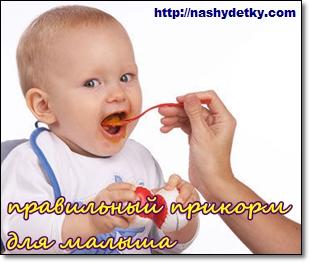 правильный прикорм для малыша