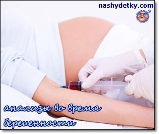 какие анализы во время беременности нкжно сдавать