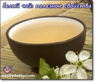 белый чай полезные свойства