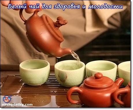 белый чай польза