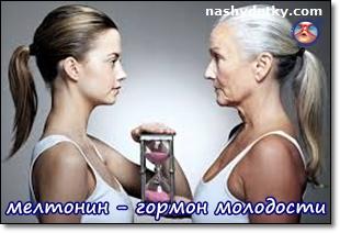 мелатонин-гормон молодости